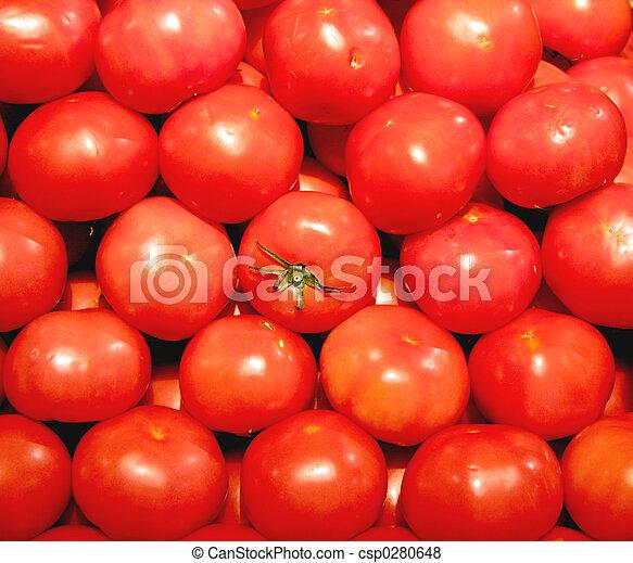 蔬菜, 番茄, - - csp0280648