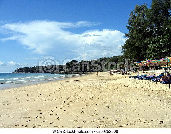 Summer at the beach - csp0292508
