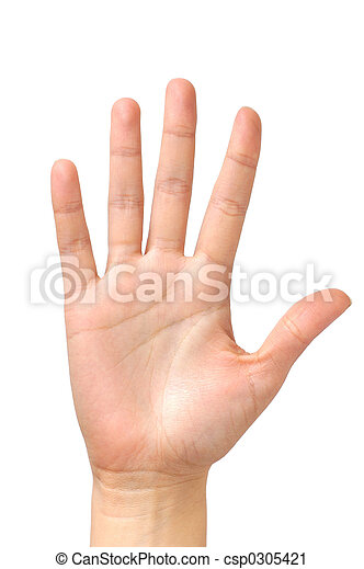 Female hand palm isolated - csp0305421