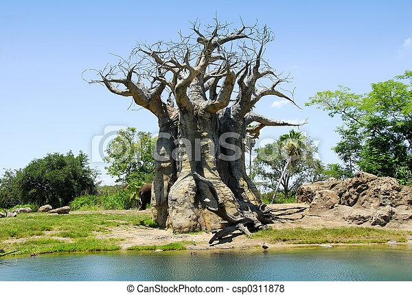樹 - csp0311878