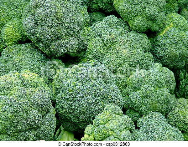 Broccoli - csp0312863