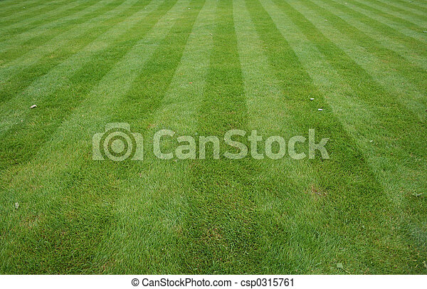 Lawn cut with stripes - csp0315761