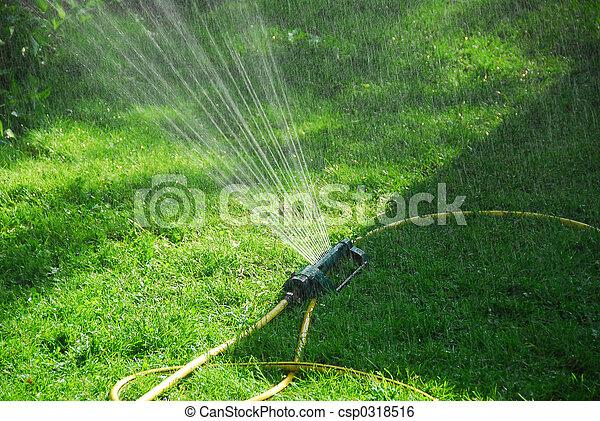 Sprinkler lawn - csp0318516