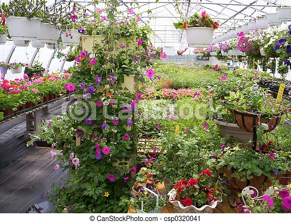 greenhouse plants and flowers - csp0320041