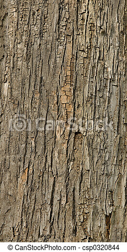Tiled tree bark texture - csp0320844