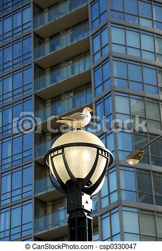 City life - csp0330047