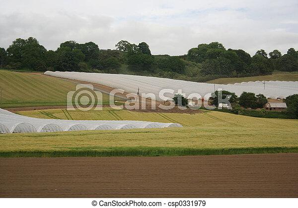 farming under plastic - csp0331979