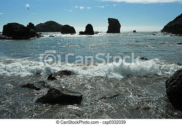 Oregon coast - csp0332039
