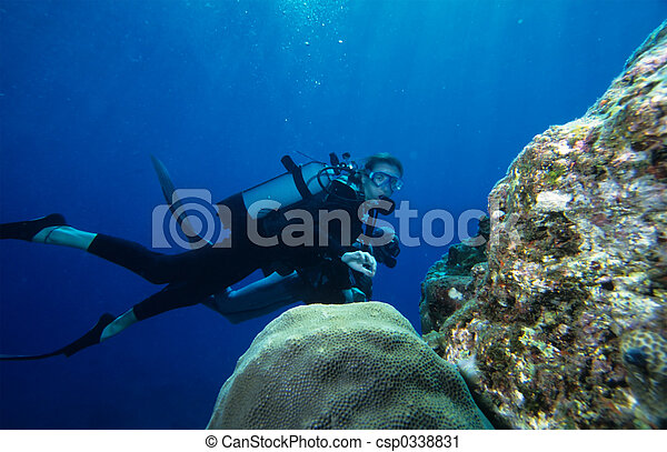 Scuba Diving - csp0338831