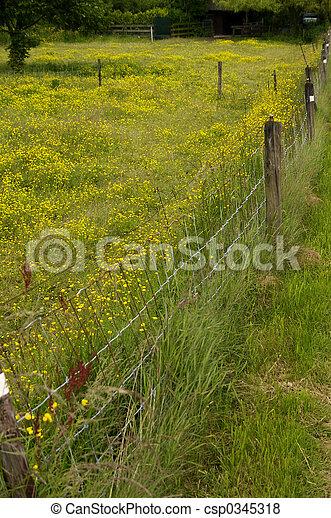 Fence line - csp0345318