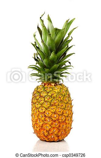 Pineapple - csp0349726