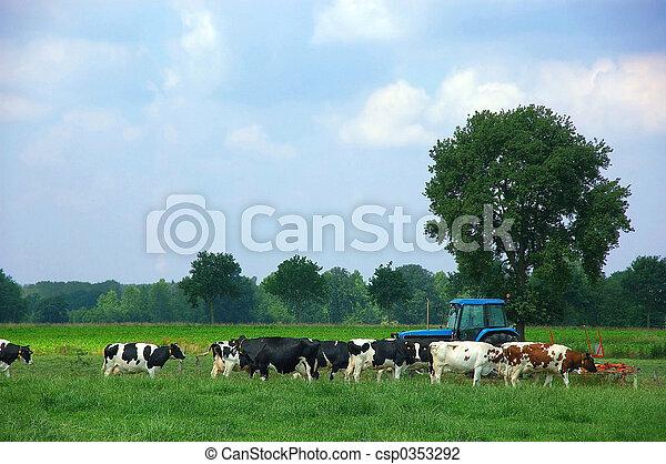 Rural scene - csp0353292