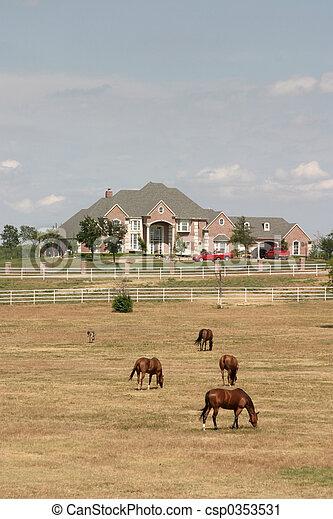 Grand Rural Estate With Horses 2 - csp0353531
