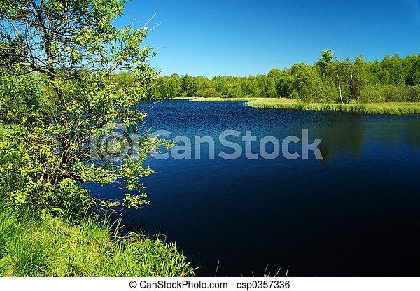 dark moor lake in th - csp0357336