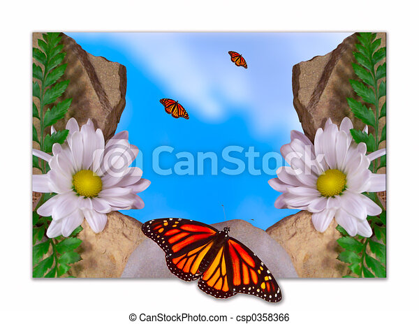 Butterfly and Daisy - csp0358366
