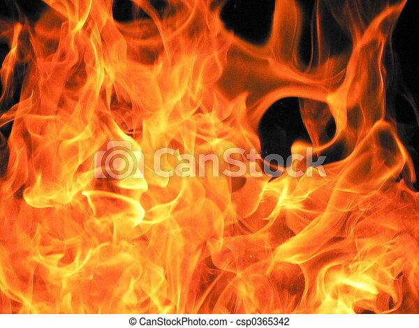fire - csp0365342