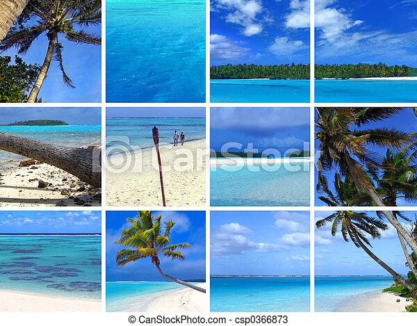 tropicais, montagem, iii - csp0366873