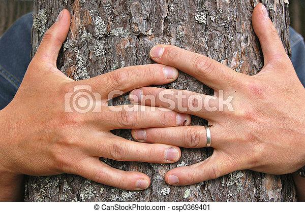 Hug a tree - csp0369401