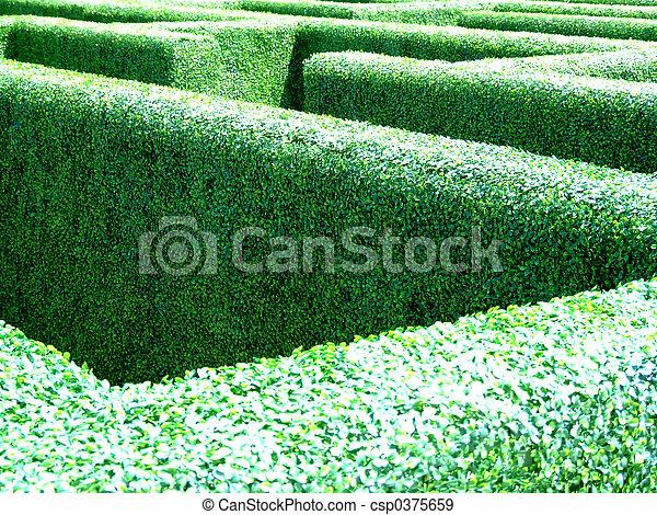 Archivi fotografici di labirinto giardino labirinto for Giardino labirinto