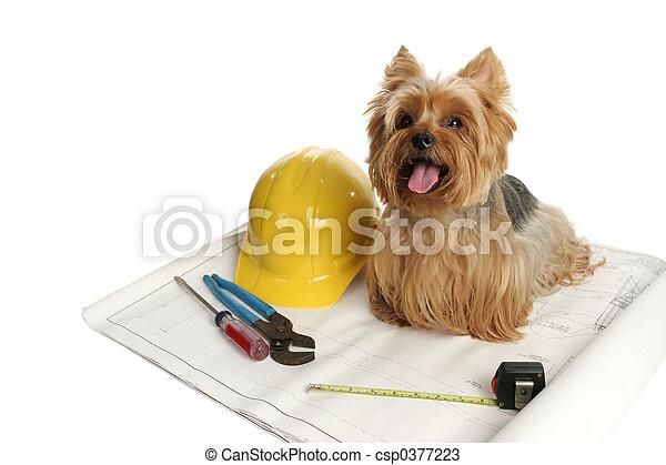 Construction Dog - csp0377223