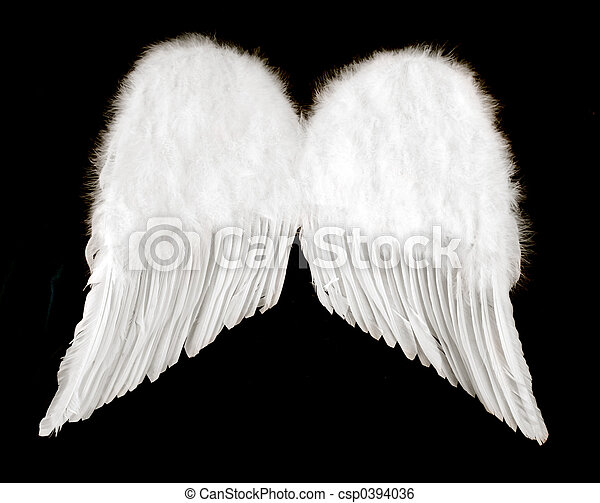 Angel Wings Isolated on Black - csp0394036