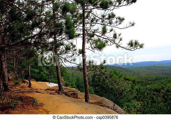 Pines cliffs trail - csp0395876
