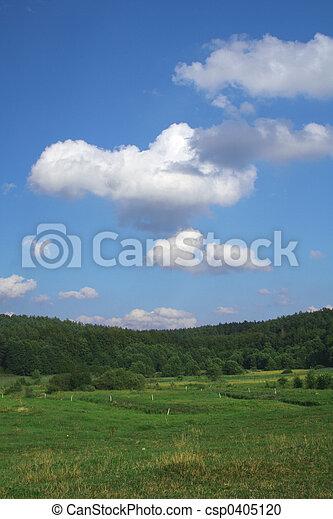 summer pasture - csp0405120