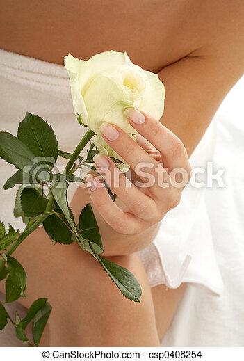 rosebud #2 - csp0408254