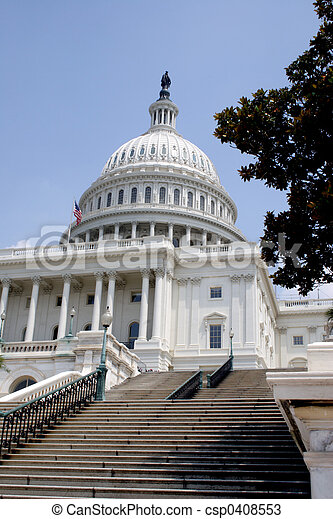 A view of the US Capital Building from the National Mall side. The steps are leading up and seem to be pointing to the dome on top of the building. It is a bright sunndy, summer day.