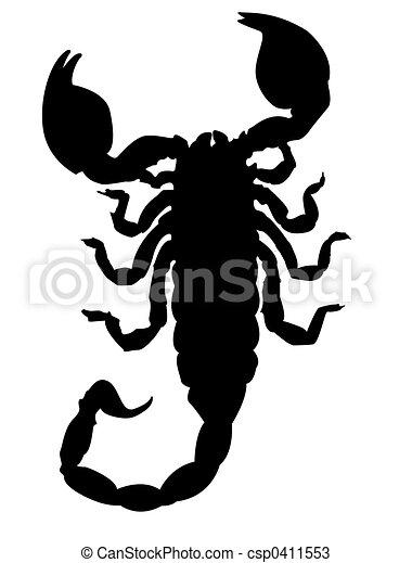 Scorpion silhouette - csp0411553