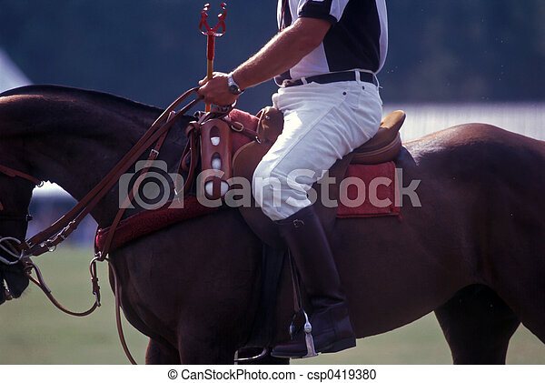 Polo official on horseback - csp0419380