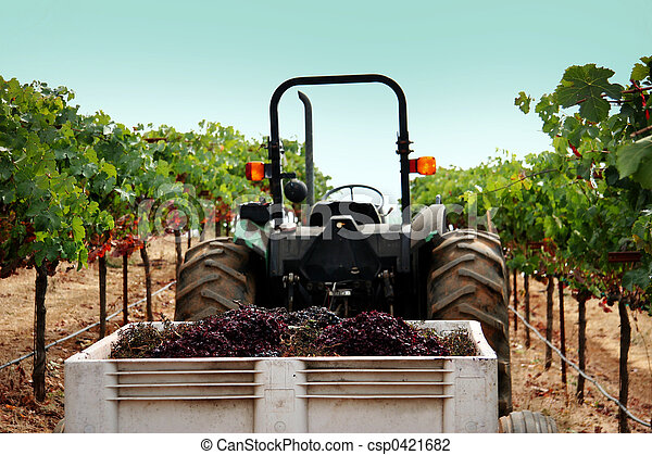 Truck at a vineyard - csp0421682