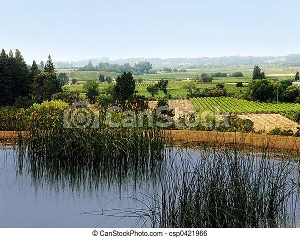 Sonoma valley - csp0421966