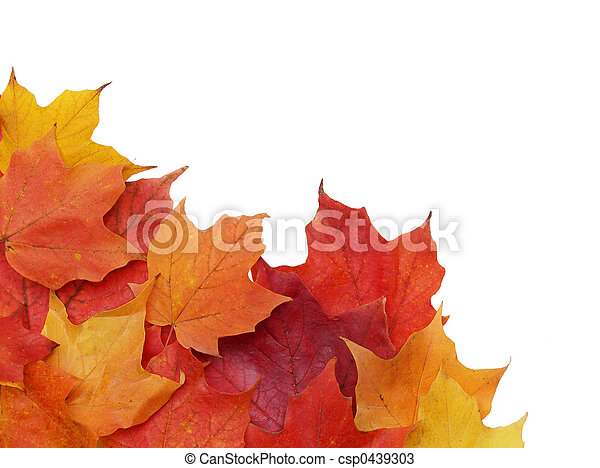 fall leaves - csp0439303