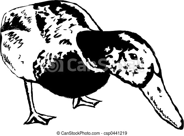 Illustration de canard sketchy dessin style - Illustration canard ...