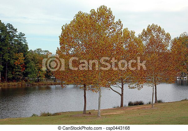 Colors Of Fall - csp0443168