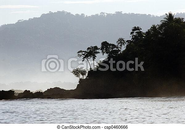 tropical costa rica  - csp0460666