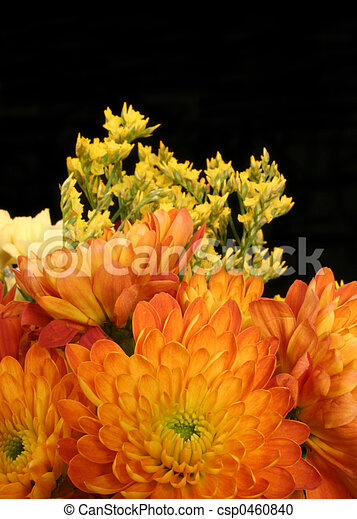 Flowers - csp0460840
