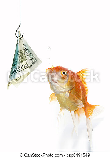Banque de photographies de poisson rouge dollar poisson for Tarif poisson rouge