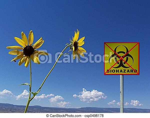 Safe Environment - csp0498178