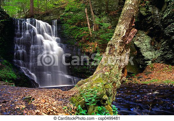 Bushkill Waterfall - csp0499481