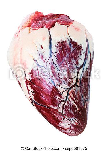 fatty heart - csp0501575
