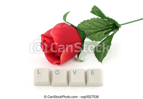 red rose and computer keys