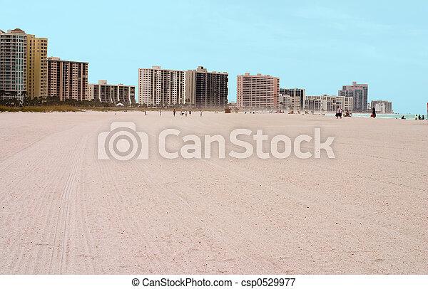 Tampa Florida Area Beach - csp0529977