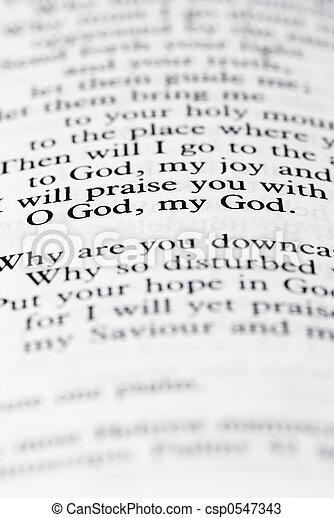 text of the bible - csp0547343