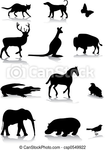 Animal silhouettes - csp0549922