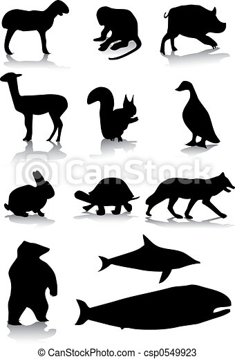 Animal silhouettes - csp0549923