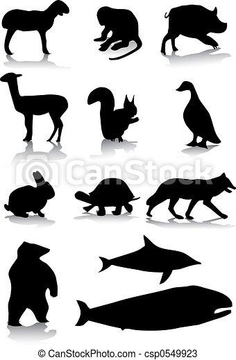 Animal silhouettes - csp0549923