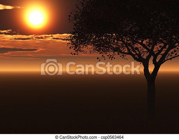 singolo, albero - csp0563464