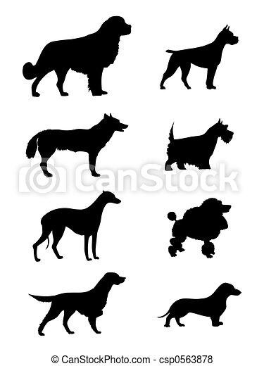 黑色半面畫像, 狗 - csp0563878